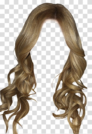 peruca marrom, penteado, penteados PNG clipart