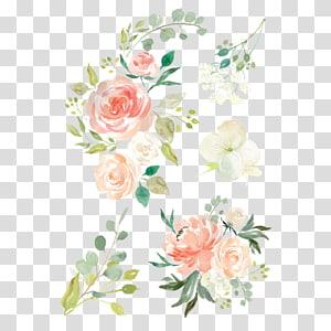 ilustração cor-de-rosa, verde, e branca das flores, flores da aguarela roupa de bebê, pintura da aguarela design floral, flor da aguarela PNG clipart
