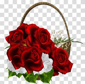Brinco La Fleur Rouge Amazon.com Roupas de joalheria, lindo buquê de rosas vermelhas, rosas vermelhas e brancas na cesta PNG clipart
