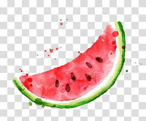 Melancia Frutti di bosco Frutas Pintura em aquarela, melancia em aquarela, ilustração de melancia png