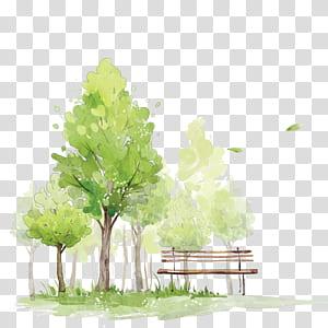 Como pintar árvores em aquarela Pintura em aquarela Esboço, Árvores em aquarela, árvore verde perto da pintura do banco png