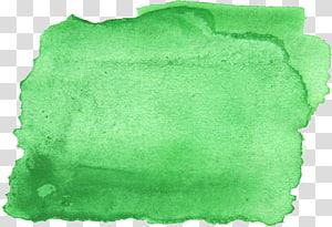 Cerceta verde-azulada do curso da pintura da aguarela, VERDE DA AGUARELA png