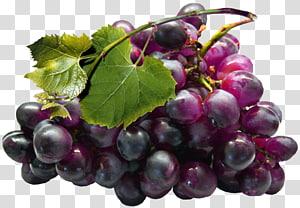 Extrato de semente de uva Suco de toranja, grandes uvas pretas, uvas vermelhas PNG clipart