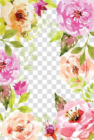 Aquarela pintura Poster do livro, aquarela flores fronteira, rosas animadas png