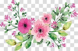 Flores em aquarela românticas, modelo de três flores de pétalas de rosa png
