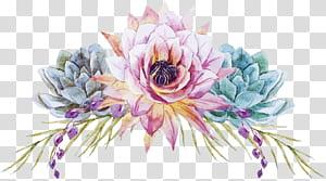 Pintura em aquarela Design floral Flor de casamento, Flores pintadas à mão, ilustração de flores rosa e azul-petróleo PNG clipart
