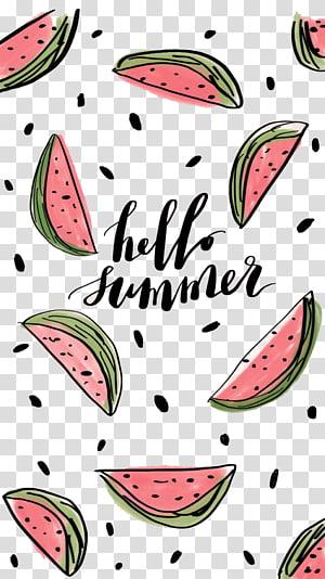 Verão de melancia, Olá verão, Olá verão e fatias de melancia ilustração png