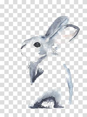 ilustração de coelho cinza, canela coelho Aquarela flores desenho Pintura em aquarela, desenho coelhinho png
