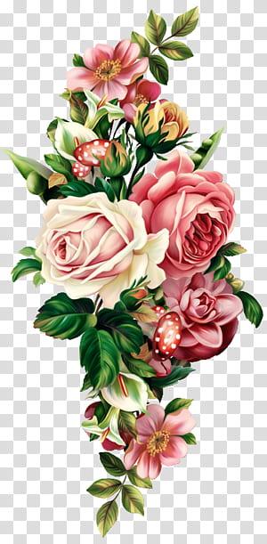Buquê de flores, puxar botânica floral Vintage Grátis, rosa, vermelho e rosa branca arranjo de flores pintura png