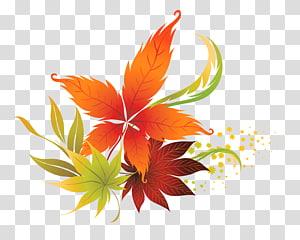 Outono folha cor, folhas de outono decoração, marrom e verde folhas ilustração PNG clipart
