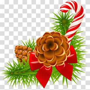 bastão de doces e bolota, Papai Noel Natal e época natalícia Euclidiana, ramo de pinheiro de Natal com cones e decoração de cana-de-doces png