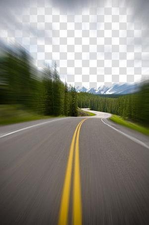 foco seletivo da estrada entre linhas de árvores durante o dia, estrada carro estrada, estrada de cenário bonito png