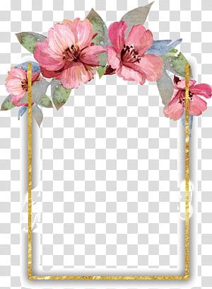 Pintura em aquarela Flor Design floral, borda de flores em aquarela bonita, quadro floral rosa, verde e branco png