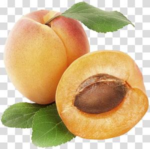 frutas de pêssego, frutas de damasco, damasco png