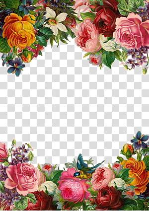 Pixabay de flores, borda de flores bonitas, ilustração de flores rosa e amarelo png
