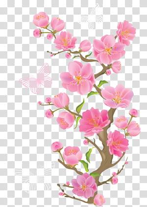 Flores cor de rosa, ramo de primavera com borboletas, borboletas em flores png