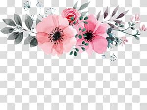 Pintura em aquarela Design floral de desenho de flor, mão desenhada Wild Rose padrões decorativos, ilustração de flores de pétalas de rosa png