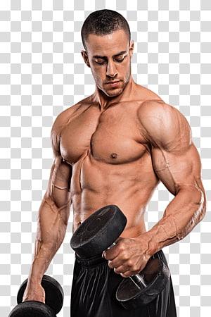 par de halteres pretos com peso fixo, Suplemento dietético Suplemento de musculação Aptidão física Músculo, musculação png