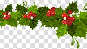 Christmas decoration Christmas ornament, Christmas Long Visco Decoration, ilustração de visco de Natal verde e vermelho png