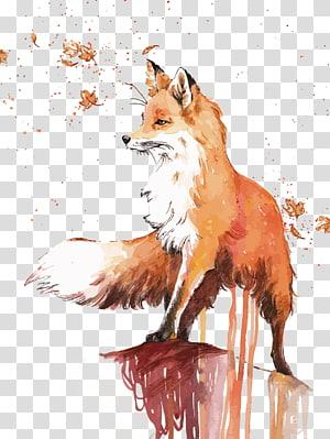 raposa na ilustração da borda do penhasco, os amantes da raposa vermelha não finalmente se encontram em algum lugar.Eles estão um no outro o tempo todo.Desenho, Fox png