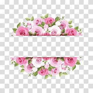 Rose Pink Flower, fronteiras de flores em aquarela rosa, rosa artworkj PNG clipart