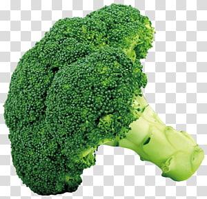Brócolis Legumes crucíferos Couve-flor Couve, brócolis, brócolis vegetal PNG clipart
