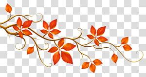 Folha de outono cor ramo, ramo decorativo com folhas de outono, folhas vermelhas ilustração PNG clipart
